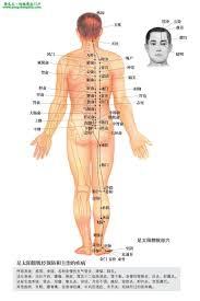 「膀胱經位置」的圖片搜尋結果