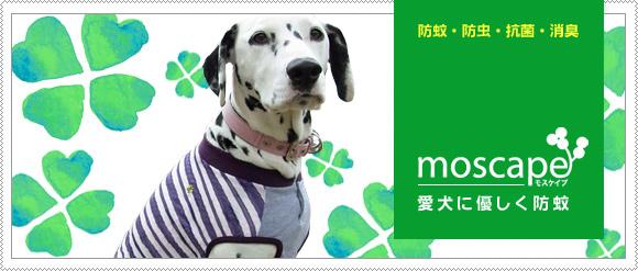 mos2012_ma4