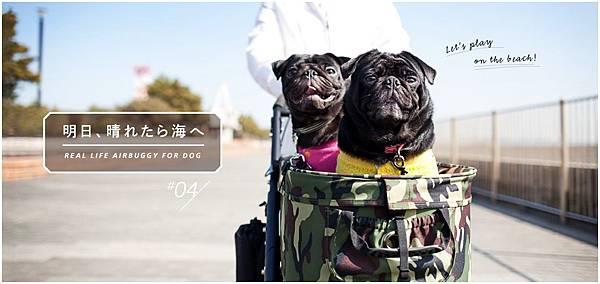 main-pic2_4.jpg