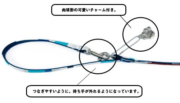 lead_multiborder_how.jpg