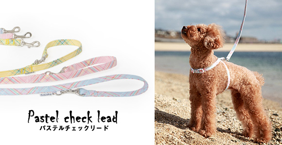 lead_pastelcheck_main.jpg