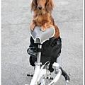 bikestyle_005.jpg