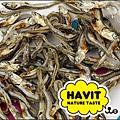 ha014_1.jpg