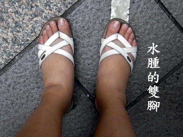 台北減重 夏日減肥 士林減肥