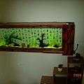 民宿的魚缸