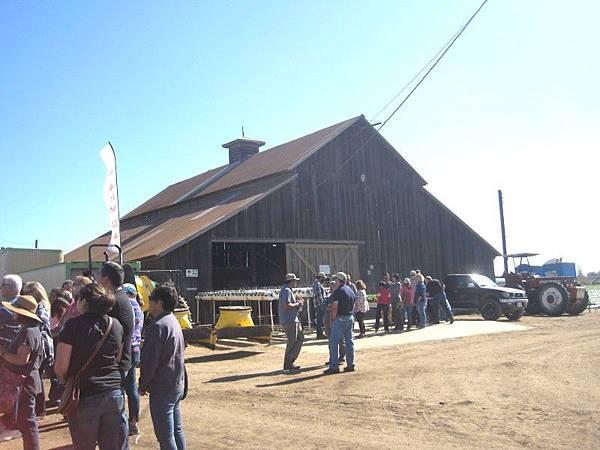 farm-11