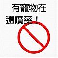Shrimp_0140_300.jpg