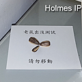 Holmes_542.png