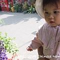 200901新春 316.jpg