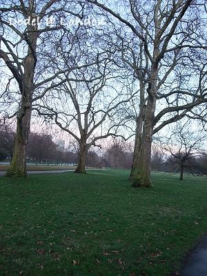 London0310 207.jpg