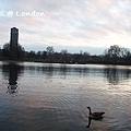 London0310 217.jpg