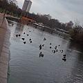 London0310 220.jpg