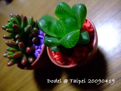 20090419 066.jpg