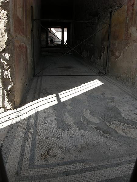 龐貝-2 這是有錢人的家,地上的狼狗馬賽克地磚就是代表.JPG