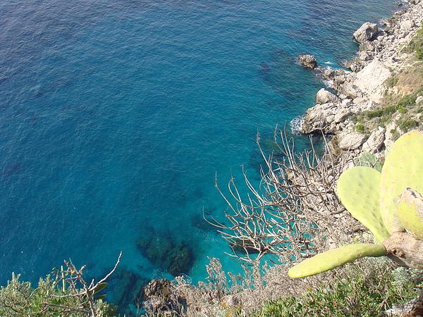 清澈的海岸線.JPG