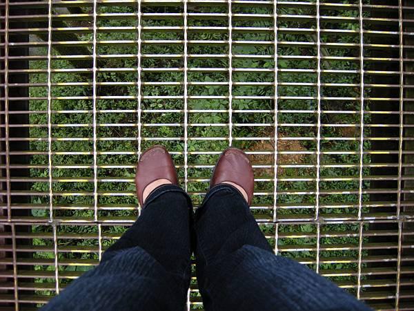 DSCN9546-腳下的景.JPG