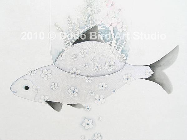 03新娘魚-2拷貝.jpg
