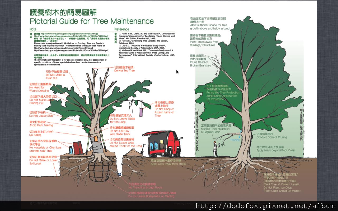 護養樹木簡易版