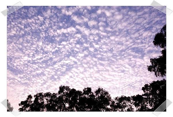 美麗的天空.jpg