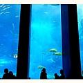 海底餐廳.jpg