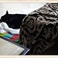 睡了lily的位置.jpg
