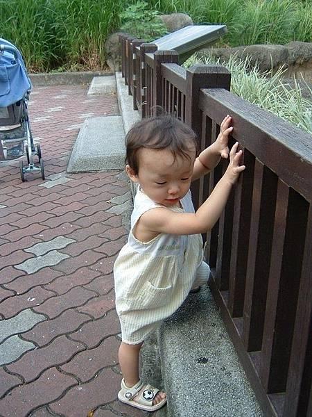 寶寶強大的適應能力