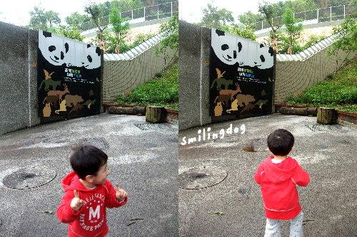 zoo003.jpg