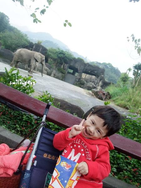 zoo025.jpg