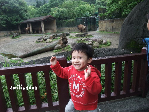 zoo028.jpg