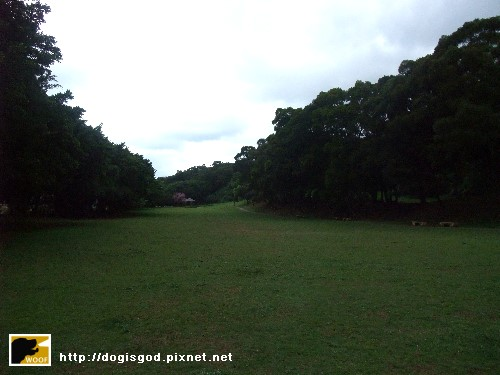20100403-07.jpg