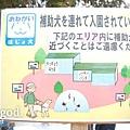 20110315-japanaid.jpg