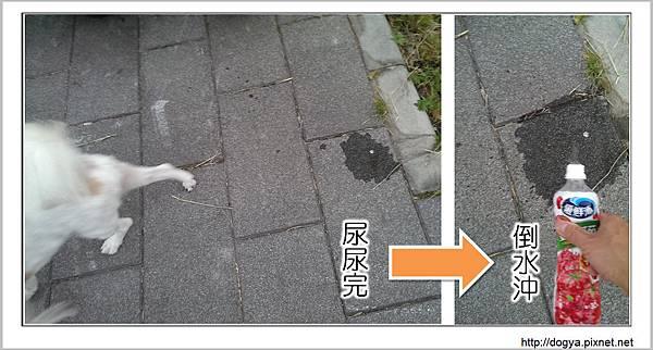 nEO_IMG_剪輯_4