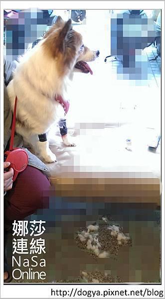 2014-02-22 15.41.32_副本