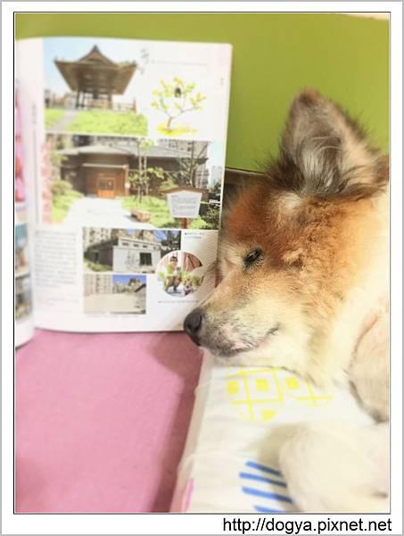 2015-09-02 11.14.16哈寵誌寵物旅遊北部篇