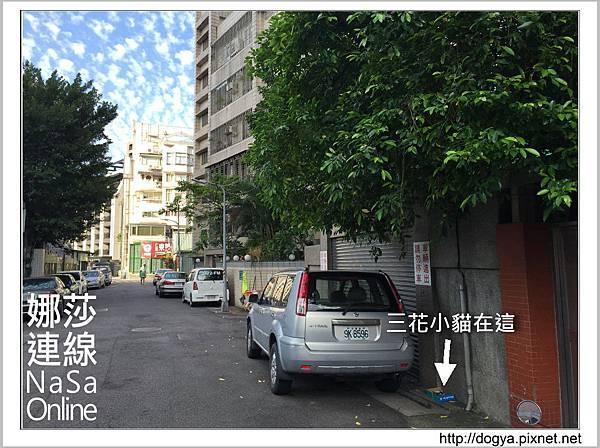 流浪貓送養2015-09-09 16.24.09.jpg