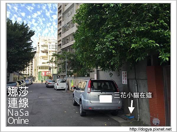 流浪貓送養2015-09-09 16.24.09