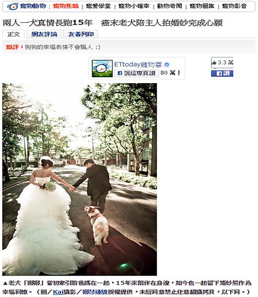 兩人一犬真情長跑15年 癌末老犬陪主人拍婚紗完成心願