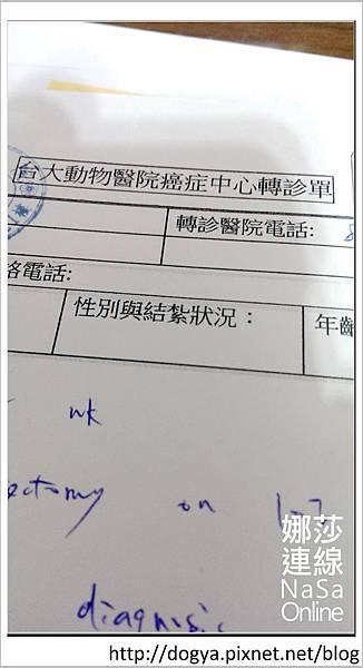 nEO_IMG_2014-04-16 23.22.22