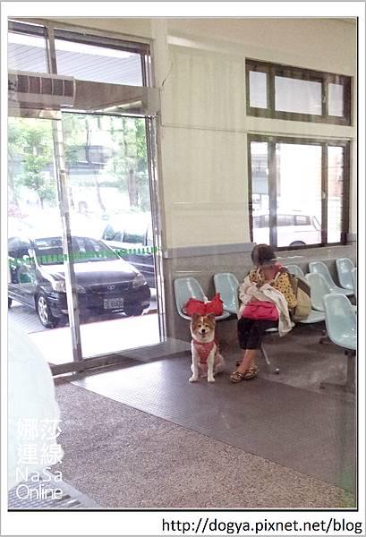 nEO_IMG_2014-06-05 16.57.28
