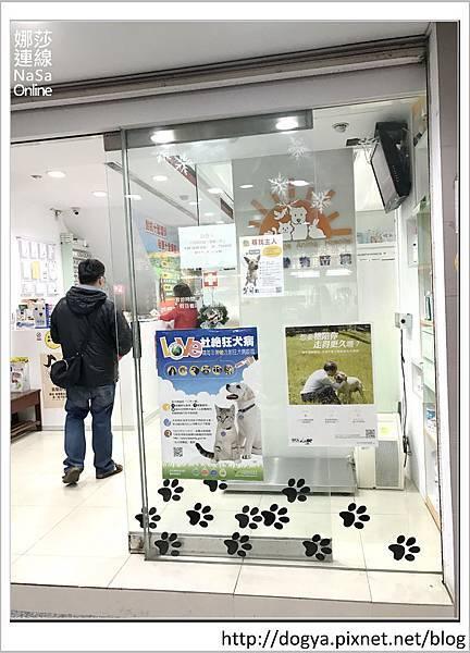 娜莎連線手工寵物零食舖-浪狗小黃送養認養領養19.jpg