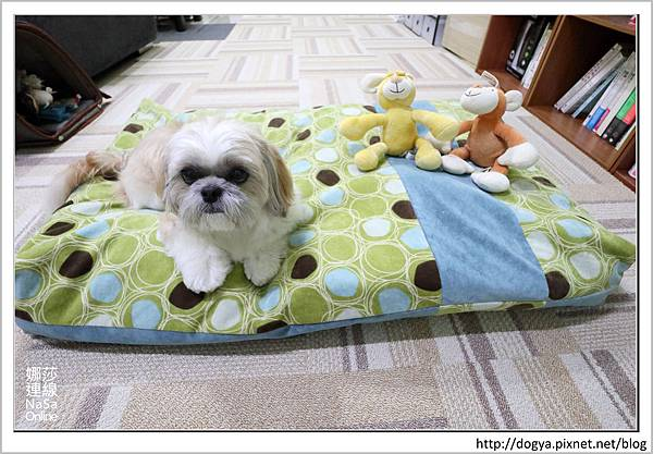 nEO_IMG_nEO_IMG_寵物睡鋪娜莎連線手工寵物零食舖_dijjo_方吐司睡墊_寵物床_六腳福利社28.jpg