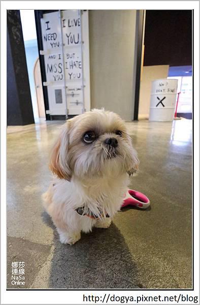 娜莎連線手工寵物零食舖_Nol Ja Korean café 韓式咖啡空間_高雄_寵物友善餐廳13.jpg