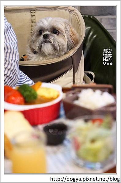 娜莎連線手工寵物零食舖_桃園_寵物友善餐廳_Mumu小倫敦15.jpg