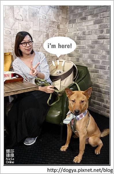 娜莎連線手工寵物零食舖_桃園_寵物友善餐廳_Mumu小倫敦19