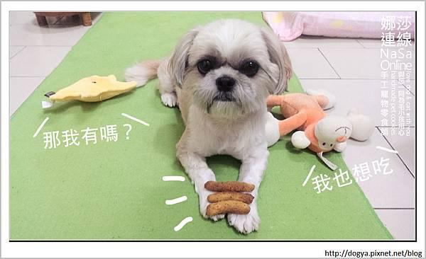 娜莎連線手工寵物零食舖_夏日電費計算_食物烘乾機11.jpg