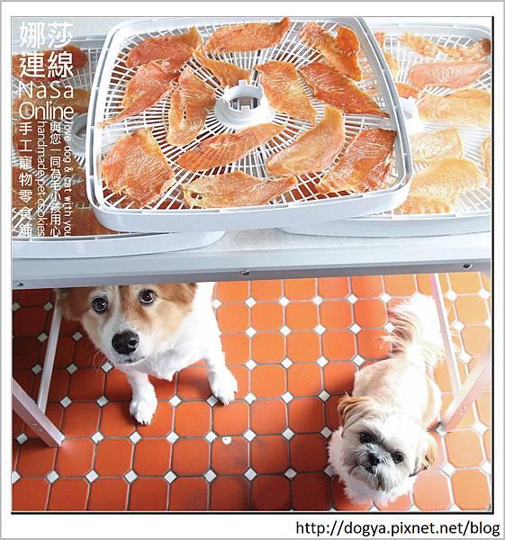 娜莎連線手工寵物零食舖_夏日電費計算_食物烘乾機37.jpg