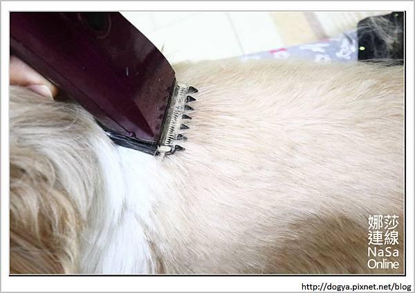 娜莎連線手工寵物零食舖_夏天_寵物剃毛_電剪推薦_華爾電剪_07.jpg