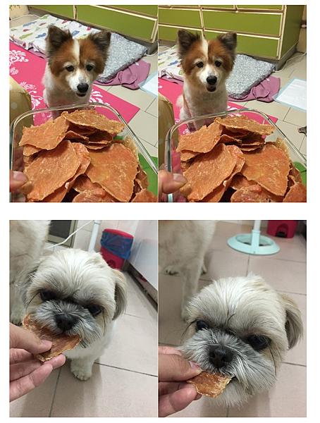 娜莎連線手工寵物零食舖_自己幫毛孩烘零食怎麼做最省錢6