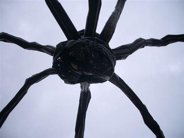 under the big spider