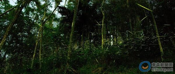 化國家植物園